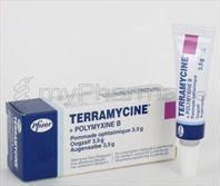 pharmacie parent sprl terramycine 3 5 g ung opht. Black Bedroom Furniture Sets. Home Design Ideas